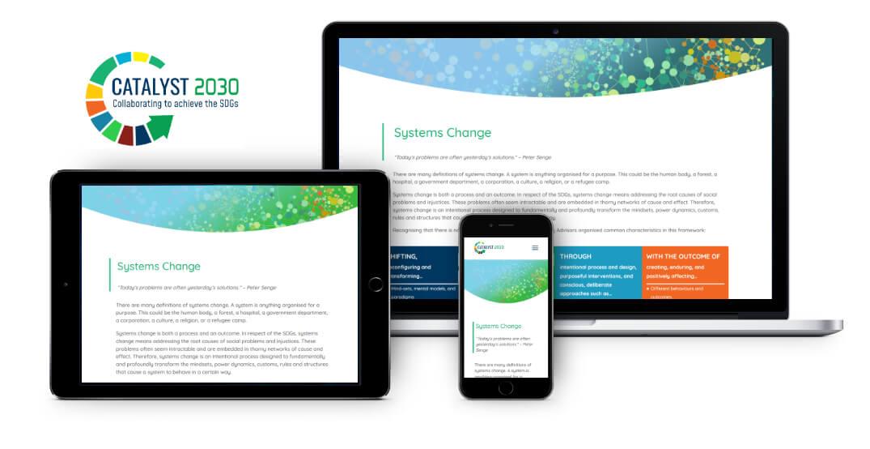Catalyst 2030 website